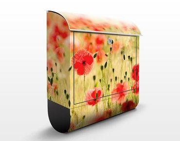 Briefkasten mit Zeitungsfach - Summer Poppies - Briefkasten Blumen