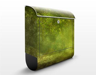 Briefkasten mit Zeitungsfach - Waldspaziergang - Hausbriefkasten Grün