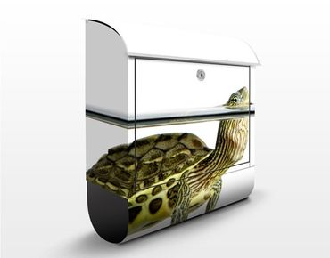 Briefkasten mit Zeitungsfach - Schildkröte - Briefkasten mit Tiermotiv