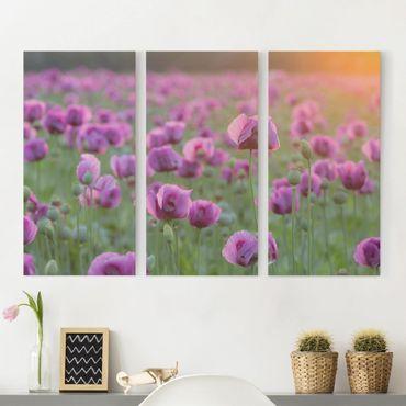 Leinwandbild 3-teilig - Violette Schlafmohn Blumenwiese im Frühling - Hoch 1:2
