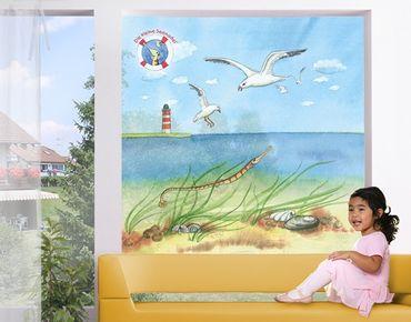 Fensterfolie - Sichtschutz Fenster Die kleine Seenadel© Möwen - Fensterbilder