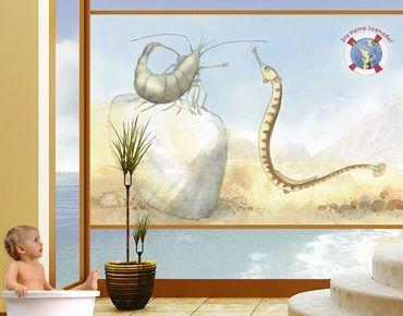 Fensterfolie - Sichtschutz Fenster Die kleine Seenadel© Muschel - Fensterbilder