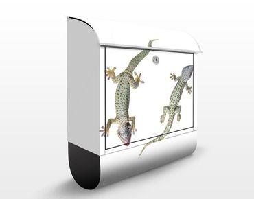 Briefkasten mit Zeitungsfach - Neugierige Geckos - Briefkasten mit Tiermotiv