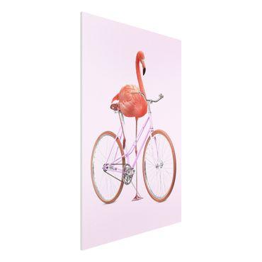 Forex Fine Art Print - Jonas Loose - Flamingo mit Fahrrad - Hochformat 3:2