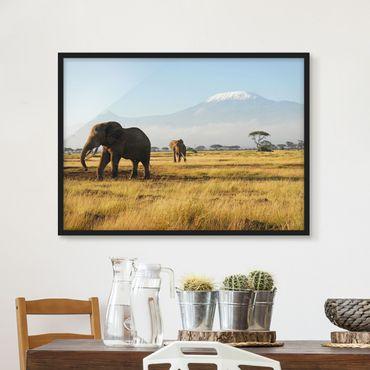 Bild mit Rahmen - Elefanten vor dem Kilimanjaro in Kenia - Querformat 3:4