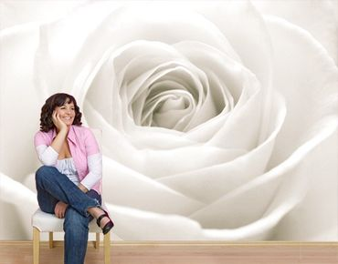 "Papiertapete - Fototapete No.40 ""THE WHITE ROSE"" 400x280cm"