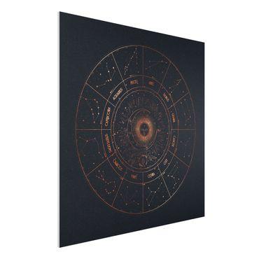 Forex Fine Art Print - Astrologie Die 12 Sternzeichen Blau Gold - Quadrat 1:1