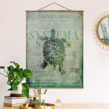Stoffbild mit Posterleisten - Vintage Collage - Antike Schildkröte - Hochformat 4:3