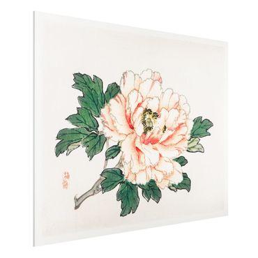 Forex Fine Art Print - Asiatische Vintage Zeichnung Rosa Chrysantheme - Querformat 3:4