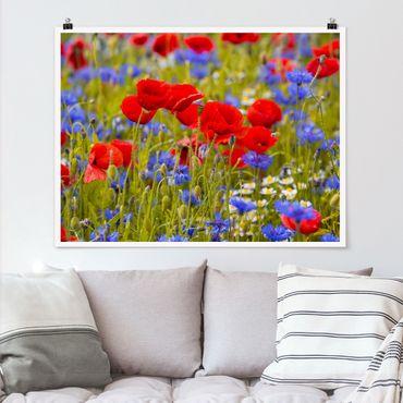 Poster - Sommerwiese mit Mohn und Kornblumen - Querformat 3:4