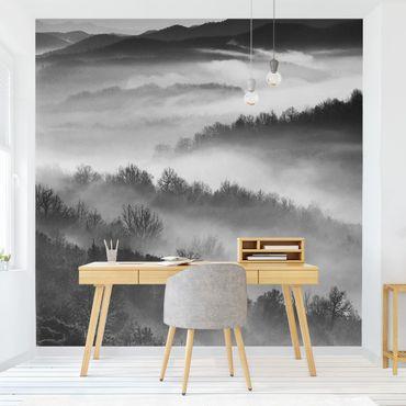 Fototapete - Nebel bei Sonnenuntergang Schwarz Weiß - Fototapete