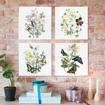 Leinwandbild 4-teilig - Britische Schmetterlinge Set II