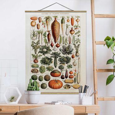 Stoffbild mit Posterleisten - Vintage Lehrtafel Gemüse - Hochformat 4:3