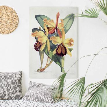 Leinwandbild - Maxim Gauci - Orchidee III - Hochformat 3:2