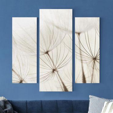 Leinwandbild 3-teilig - Sanfte Gräser - Galerie Triptychon