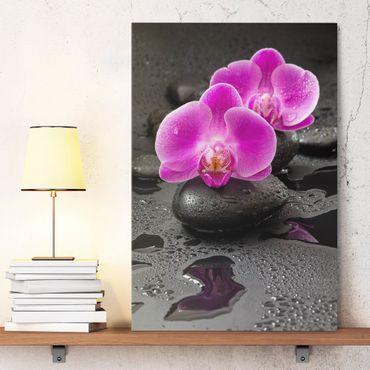Leinwandbild - Pinke Orchideenblüten auf Steinen mit Tropfen - Hochformat 3:2