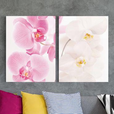 Leinwandbild 2-teilig - Delicate Orchids - Hoch 3:4