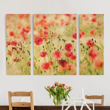 Leinwandbild 3-teilig - Summer Poppies - Triptychon