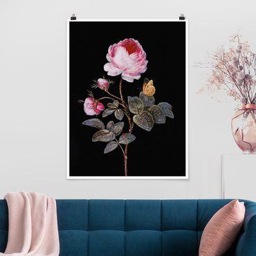 Poster - Barbara Regina Dietzsch - Die hundertblättrige Rose - Hochformat 4:3