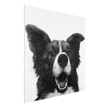 Forex Fine Art Print - Illustration Hund Border Collie Schwarz Weiß Malerei - Quadrat 1:1