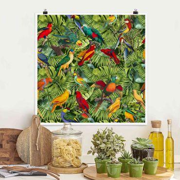 Poster - Bunte Collage - Papageien im Dschungel - Quadrat 1:1