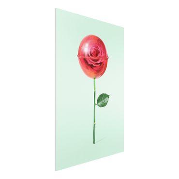 Forex Fine Art Print - Jonas Loose - Rose mit Lollipop - Hochformat 3:2