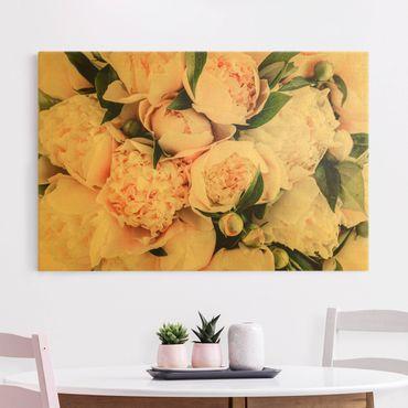 Leinwandbild Gold - Rosa Pfingstrosen mit Blättern - Querformat 3:2