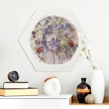 Hexagon Bild Forex - Wasserfarben - Marienkäfer im Garten