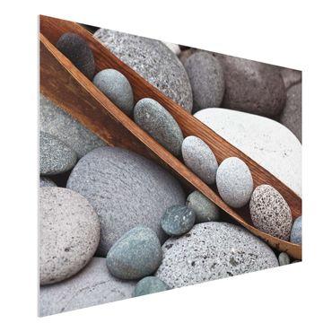 Forex Fine Art Print - Stillleben mit grauen Steinen - Querformat 2:3
