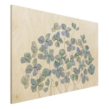 Holzbild - Blaue Hortensienblüten - Querformat 2:3