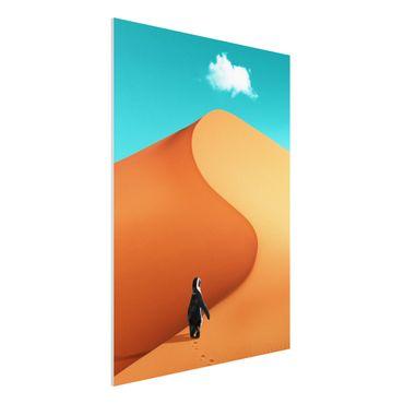 Forex Fine Art Print - Jonas Loose - Wüste mit Pinguin - Hochformat 4:3