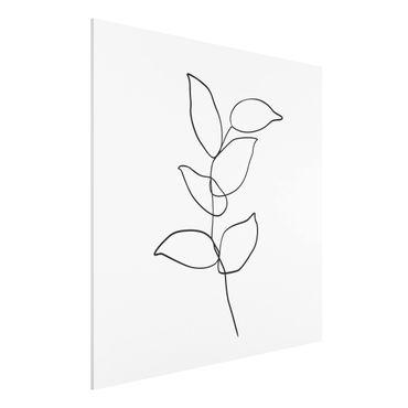 Forex Fine Art Print - Line Art Zweig Schwarz Weiß - Quadrat 1:1
