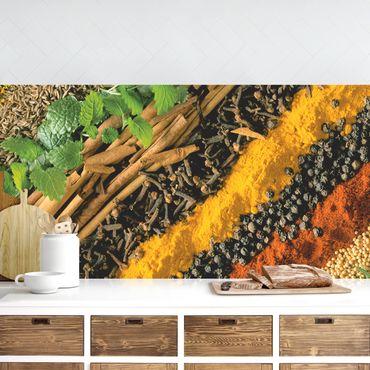 Küchenrückwand - Gewürzstreifen
