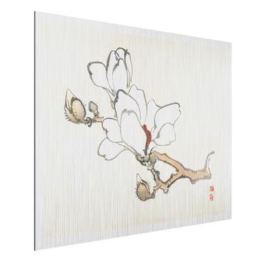 Aluminium Print gebürstet - Asiatische Vintage Zeichnung Weiße Magnolie - Querformat 3:4
