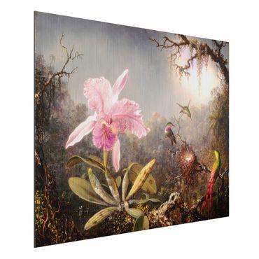 Aluminium Print gebürstet - Martin Johnson Heade - Orchidee und drei Kolibris - Querformat 3:4