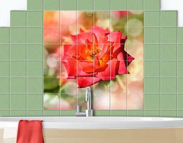 Fliesenbild - No.YK19 Shining Rose