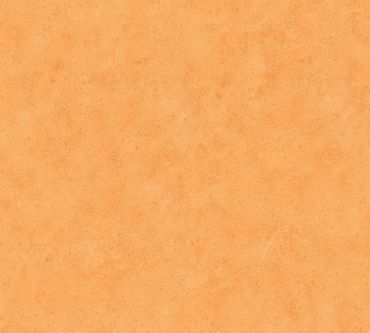 A.S. Création Unitapete Boys & Girls 6 in Orange