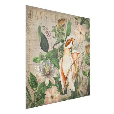 Aluminium Print gebürstet - Colonial Style Collage - Rosa Kakadu - Quadrat 1:1