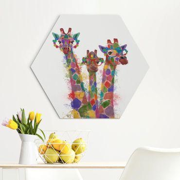 Hexagon Bild Alu-Dibond - Regenbogen Splash Giraffen-Trio