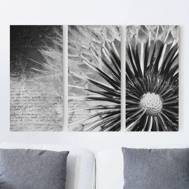 Leinwandbild 3-teilig - Pusteblume Schwarz & Weiß - Hoch 1:2