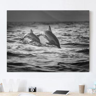 Leinwandbild - Zwei springende Delfine - Querformat 3:4