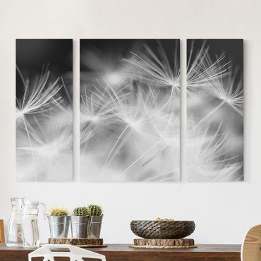 Leinwandbild 3-teilig - Bewegte Pusteblumen Nahaufnahme auf schwarzem Hintergrund - Triptychon