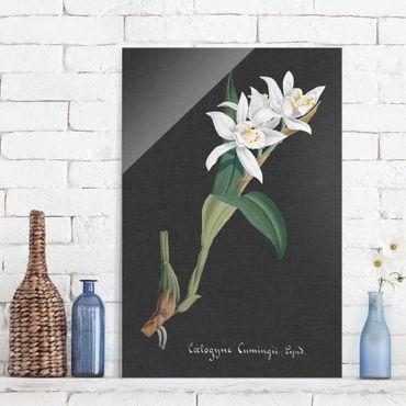 Glasbild - Weiße Orchidee auf Leinen II - Hochformat 3:2