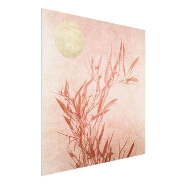Forex Fine Art Print - Goldene Sonne mit Rosa Bambus - Quadrat 1:1