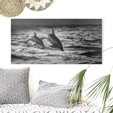 Leinwandbild - Zwei springende Delfine - Querformat 1:2
