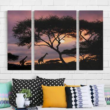 Leinwandbild 3-teilig - Safari in Afrika - Triptychon