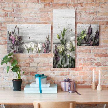 Leinwandbild 3-teilig - Tulpen-Rose Shabby Holzoptik - Collage 2