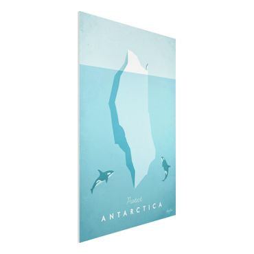 Forex Fine Art Print - Reiseposter - Antarktis - Hochformat 3:2