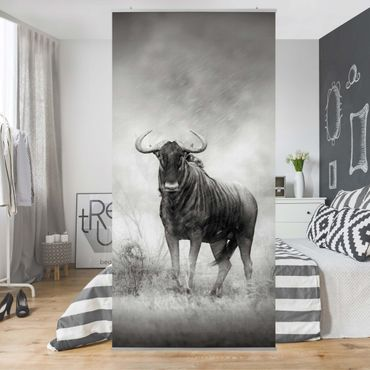 Raumteiler - Staring Wildebeest 250x120cm