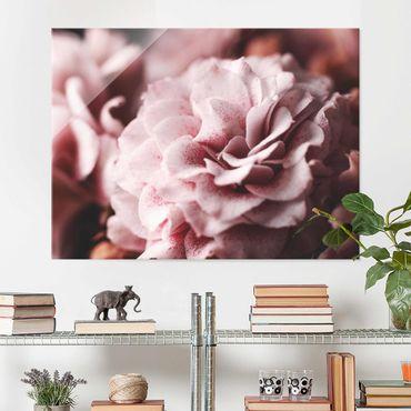 Glasbild - Shabby Rosa Rose Pastell - Querformat 3:4